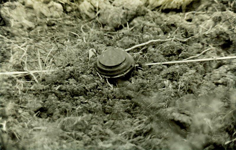 minenräumen an der deutsch deutschen grenze