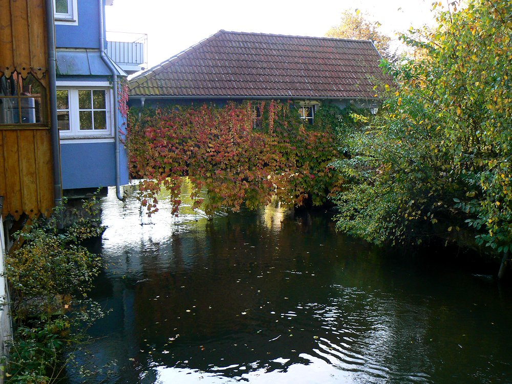 Romantische Ecken am Mühlbach