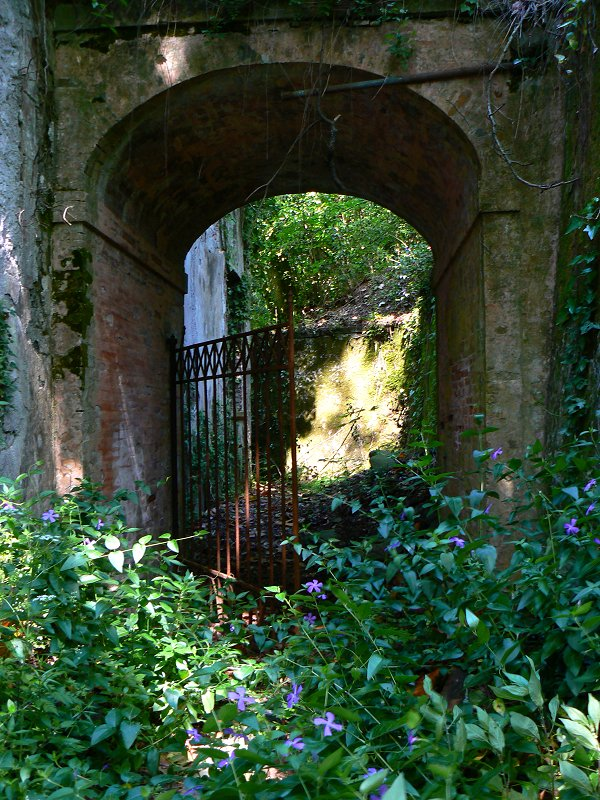 Secret Garden Der Geheime Garten